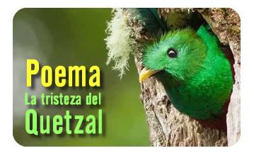 La Tristeza del Quetzal.